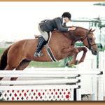 Regina jumping over fence