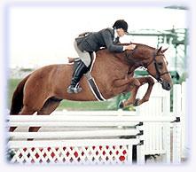 Regina Liberatore on a jumper
